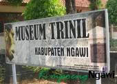 Museum Trinil, Pesonamu Kini