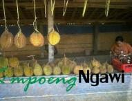 Durian Khas Ngrambe-Ngawi