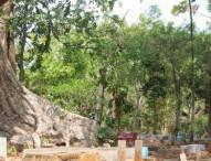 Mitos Punden Jati Nowong, Krandegan