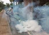Antisipasi Chikungunya Meluas, Dinkes Ngawi Lakukan Fogging