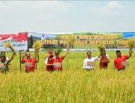 Panen Raya Ngawi Bersama Menteri Pertanian RI