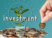 Banyak Potensi Investasi di Ngawi
