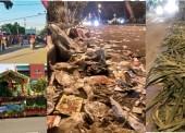 Sampah – Sampah Kotori Kota Kita