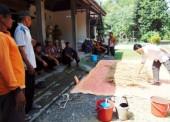 Sosialisasi Ternak Sapi Disnak Ngawi