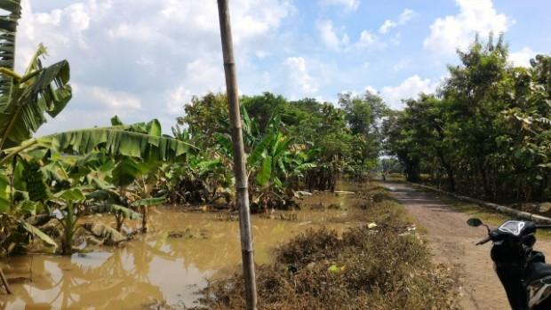 Alhamdulillah Banjir Ngawi Mulai Surut