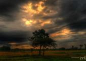Menyoal Ketetapan Logika Langit