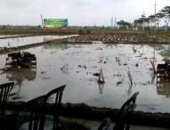 Sumarjo Gatot Irianto : Ngawi Bisa Capai Indeks Pertanaman 300