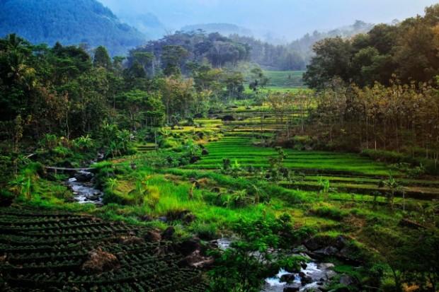 Ngrayudan Menuju Launching Wisata Cunthang River Tubing