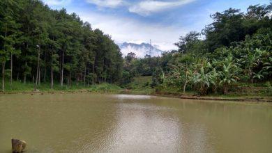 Photo of Pemberdayaan Desa Melalui Kiprah Pokdarwis