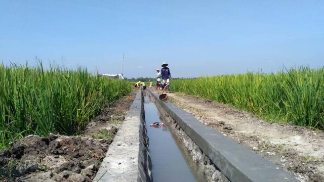 pembangunan-saluran-air-pertanian-legowetan