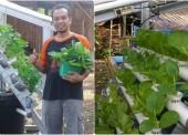 Sukses Dengan Percobaannya, Choirul Akan Kembangkan Budidaya Sayuran Hidroponik