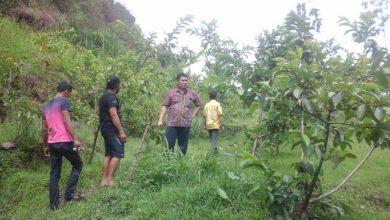 Photo of Asidewi Ngawi dan Disparpora Petakan Potensi Wisata Desa Karanggupito