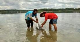 Pokdarwis Pondok Indah Taburkan Benih Ikan di Waduk Pondok Bersama Petugas DAS Solo