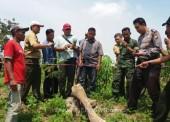 Disparpora Ngawi Koordinasi dengan Tim Museum Trinil Teliti Temuan Dugaan Fosil