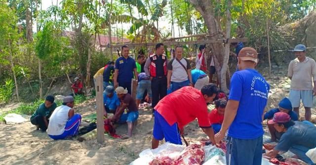 Suasana penyembelihan hewan kurban di Dusun Boan, Desa Sumberbening, Kecamatan Bringin dalam kegiatan Bakti Kampoeng 2018, Rabu (22/08/2018). Foto-Dok. Polsek Bringin