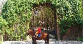 Kamu Bisa Belajar Memanah, Berenang, dan Berkuda di Ponpes Haji Soli
