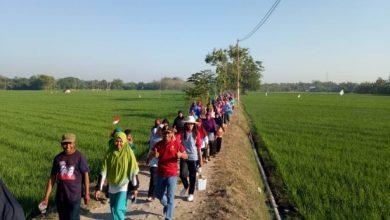 Photo of Jalan Sehat Sambil Menikmati Pemandangan Menyejukkan Mata di Desa Ngompro