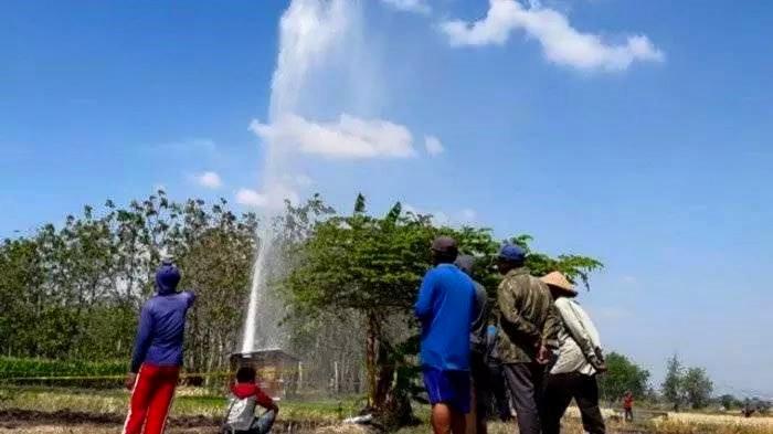 Beberapa warga melihat Semburan Air di sawah desa Sidolaju, Widodaren, Ngawi. Foto-Istimewa