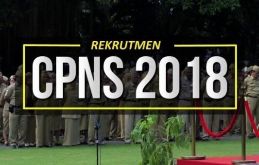 Provinsi Jatim Membuka 2.065 Formasi CPNS Daerah Tahun 2018