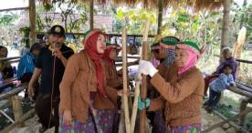 Berbagai Potensi Lokal Disuguhkan dalam Festival Tradisi Desa Mojo