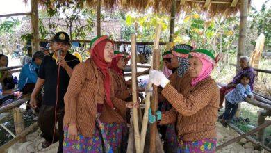 Photo of Berbagai Potensi Lokal Disuguhkan dalam Festival Tradisi Desa Mojo