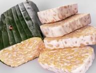 Segudang Protein Sebagai Tulang Punggung Pariwisata Dan Ekonomi Kota Ngawi