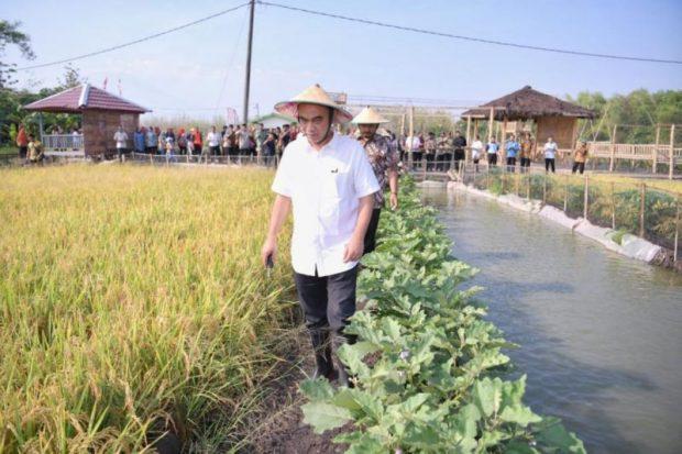 Wamendes Budi Arie Setiadi Kunjungi Desa Gendingan dan Resmikan Destinasi Wisata Sawah Merti Bumi