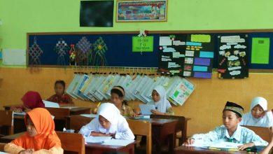 Photo of Hasil Kompetisi Sains Nasional Kabupaten Ngawi Jenjang SD Tahun 2020