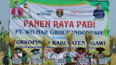 Photo of Meski Lahan Pertanian Berkurang Ratusan Hektare, Jumlah Produksi Padi Di Ngawi Masih Terbesar Kedua di Jatim