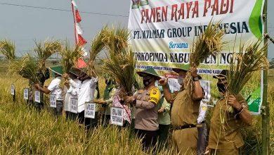 Photo of Potensi Pertanian Dinilai Tinggi, PT Wilmar Group Indonesia Tanamkan Investasi di Ngawi