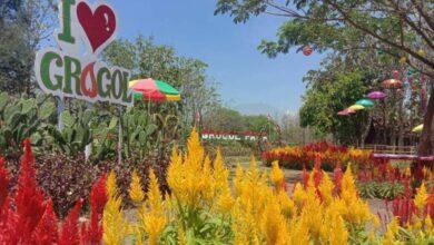Photo of Grogol Park, Taman Bunga Cantik di Kampung Kerbau Ngawi